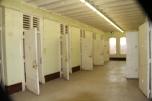 1st floor cells