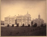 The elms from the north east 1880's